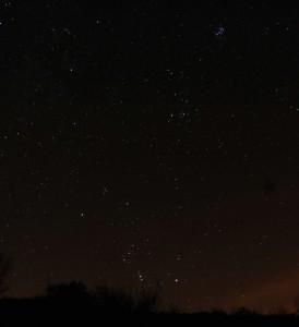 Hoping for Leonid meteors