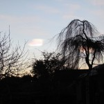 2012-01-12-Iridescent-01
