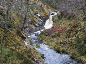Gorge with fast flowing burn