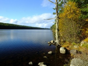 TDFC walk by Loch Migdale, October 18; photo Russell